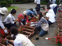 201106ryokuka04.jpg