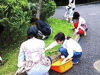 20130619ryokuka_02.jpg