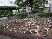 20130619ryokuka_11.jpg