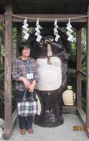 201410_kiku_05.jpg