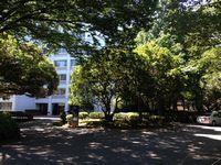 20150714_campus_07.jpg