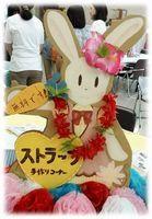 201509_festival_seijin_01.jpg