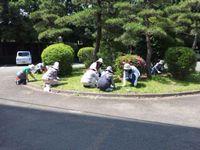 ryokuka_2012s_02.jpg