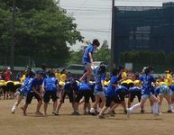 20140515_sirousagi_01.jpg