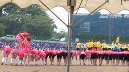 20140515_sirousagi_02.jpg