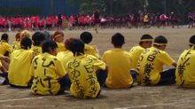20140514_yellow_01.jpg