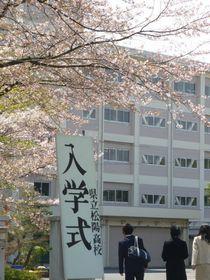 2014sakura21.jpg